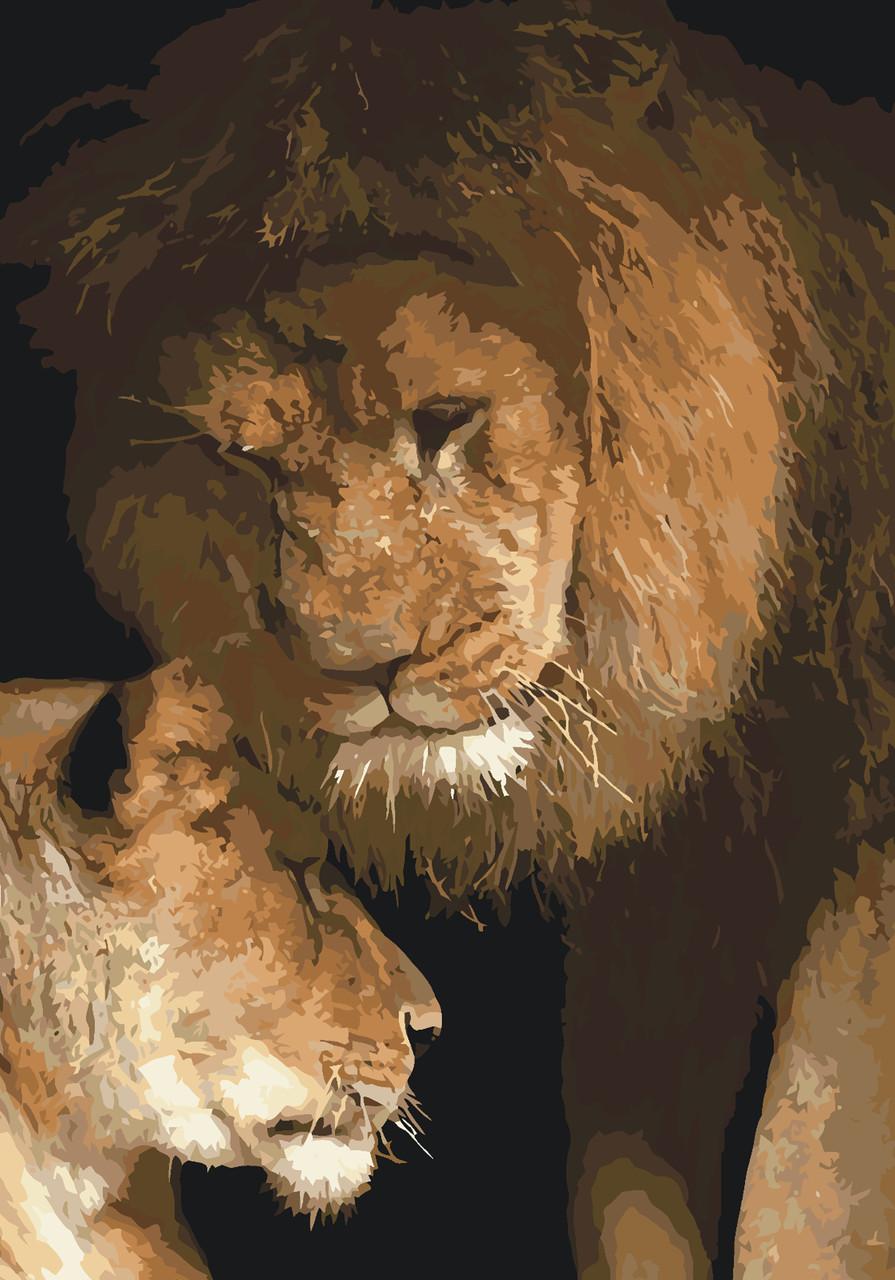 Картина по номерам Идейка Сила любви 35*50 см (в коробке) арт.KH2489