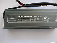 Блок питания BIOM Professional DC12 250W WBP-250 20А герметичный, фото 1