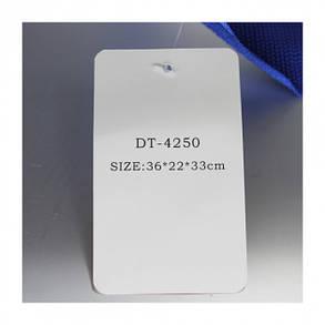 Cумка холодильник термосумка на 26 л. размер 36х22х33 см DT 4250 DT Smart, фото 2