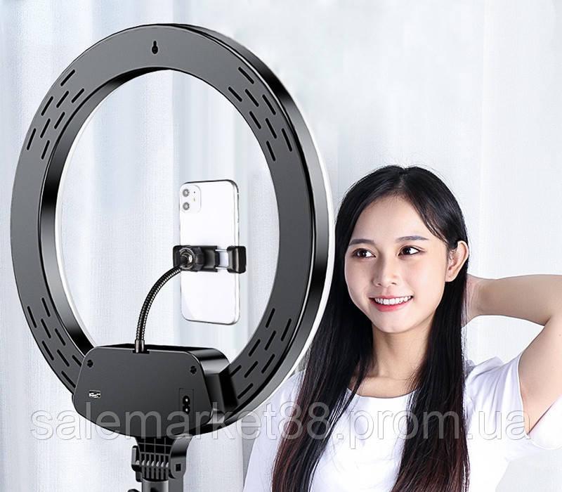 Кольцевая светодиодная лампа LED AL-33 (диаметр 33 cм) с пультом и держателем