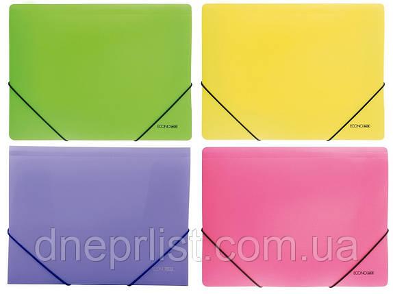 Папка на резинках А4, Economix цветная,, фото 2