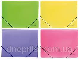 Папка на резинках А4, Economix цветная,