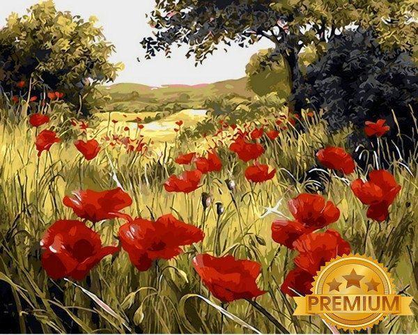 Картина по номерам 40×50 см. Babylon Premium (цветной холст + лак) Маковая поляна Художник Мари Дипналь (NB 1432)
