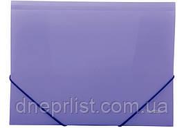 Папка на резинках А4, Economix цветная, Фиолетовая