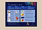 Картина по номерам 40×50 см. Babylon Premium (цветной холст + лак) Васильки и ромашки (NB083), фото 5