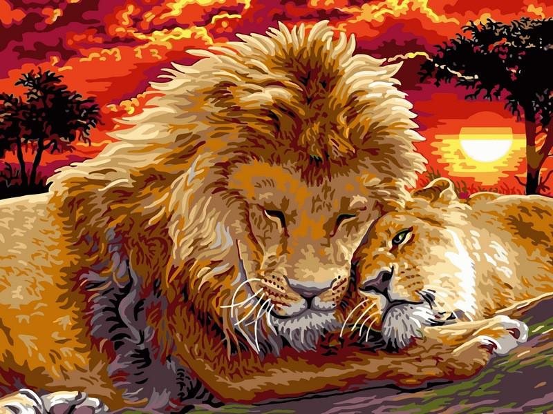 Картина по номерам 30×40 см. Babylon Львиная нежность (VK 102)