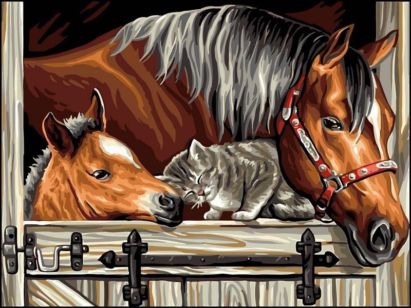Картина по номерам 30×40 см. Babylon Котенок и лошади (VK 124)