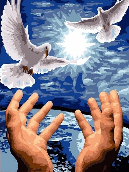 Картина по номерам 30×40 см Babylon Пара голубей (VK 246)