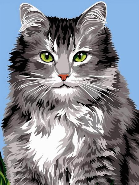 Картина по номерам 30×40 см Babylon Длинношёрстная кошка (VK 237)