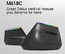 Беспроводная бесшумная вертикальная мышь с подсветкой Delux M618C RGB Black