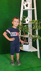Детские Футболка + шорты для мальчика  4 года темно-синий