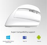 Бездротова вертикальна миша Delux M618 Mini GX Білий, фото 2