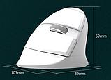 Бездротова вертикальна миша Delux M618 Mini GX Білий, фото 6