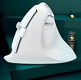 Бездротова вертикальна миша Delux M618 Mini GX Білий, фото 4