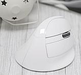 Бездротова вертикальна миша Delux M618 Mini GX Білий, фото 7