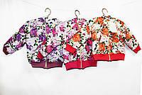 Кофта детская толстовка  на махровой подкладке для девочки. ARD 789, фото 1