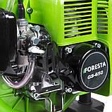 Мотоопрыскиватель Foresta GS-650, фото 3