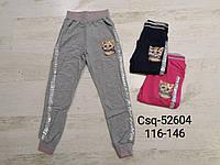 Спортивные штаны для девочек оптом, Seagull, 116-146 см,  № CSQ-52604