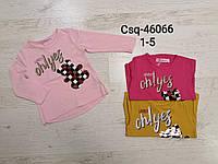 Реглан для девочек оптом, Seagull, 1-5 лет,  № CSQ-46066