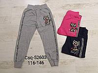 Спортивные штаны для девочек оптом, Seagull, 116-146 см,  № CSQ-52603