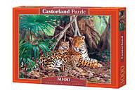 """Пазлы 3000 элементов """"ягуары в джунглях"""", C-300280   Castorland"""