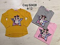 Реглан для девочек оптом, Seagull, 4-12 лет,  № CSQ-52428