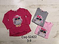 Реглан для девочек оптом, Seagull, 3-8 лет,  № CSQ-52422