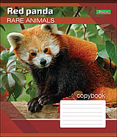 Тетрадь 18 листов линия А5 набор 25 шт. в упаковке 1 Вересня RARE ANIMALS 764544