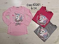 Реглан для девочек оптом, Seagull, 6-14 лет,  № CSQ-52201
