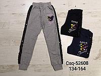 Спортивные штаны для девочек оптом, Seagull, 134-164 см,  № CSQ-52608