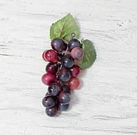 Виноград 10 см. фиолет