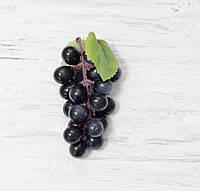 Виноград 10 см. темно-синий