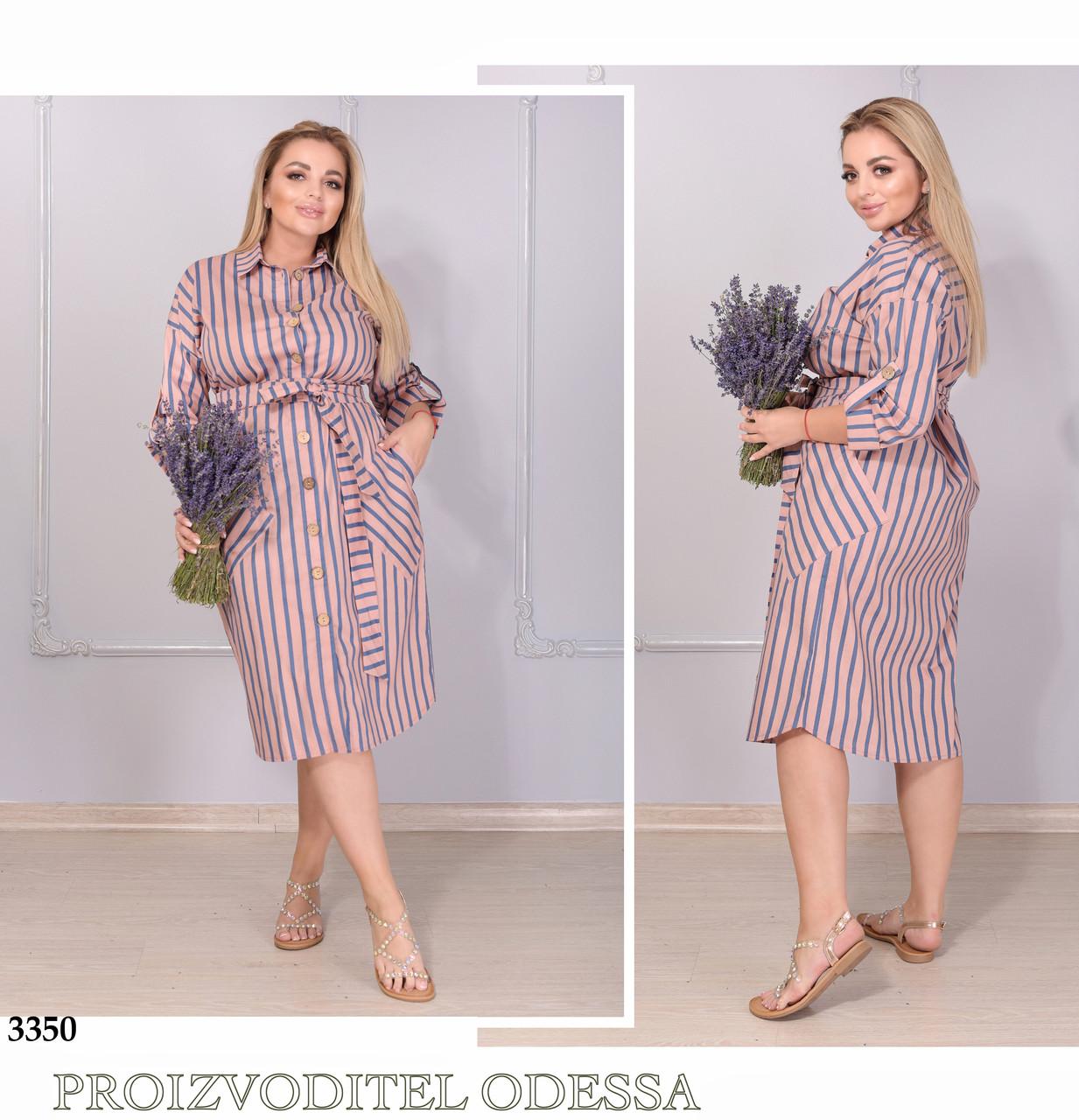 Сукня-сорочка міді в смужку коттон 48-50,52-54,56-58,60-62,64-66