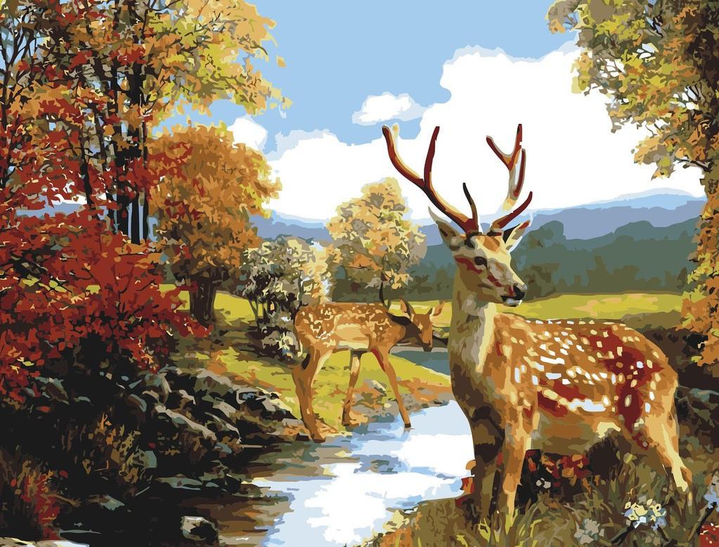 Картина по номерам 40×50 см. Babylon Олени у ручья (MS117)