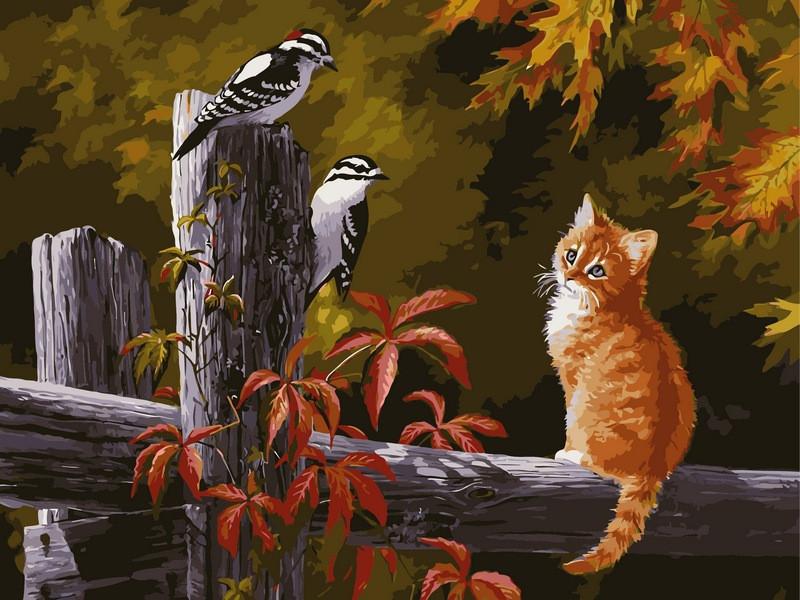 Картина по номерам 40×50 см. Babylon Котенок и птички на заборе Художник Клейтон Персис (VP134)