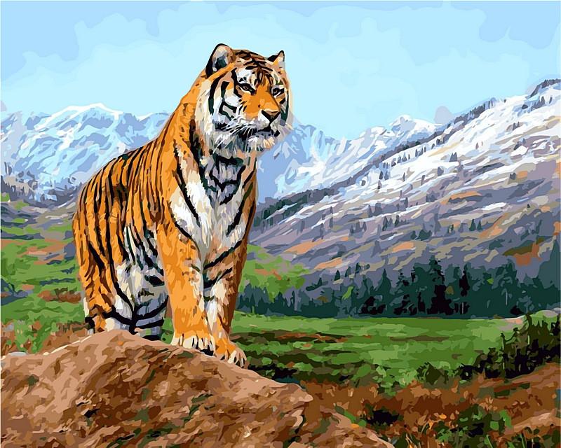 Картина за номерами 40×50 див. Babylon Тигр на тлі засніжених гір Художник Страйблинг Девід (VP 460)