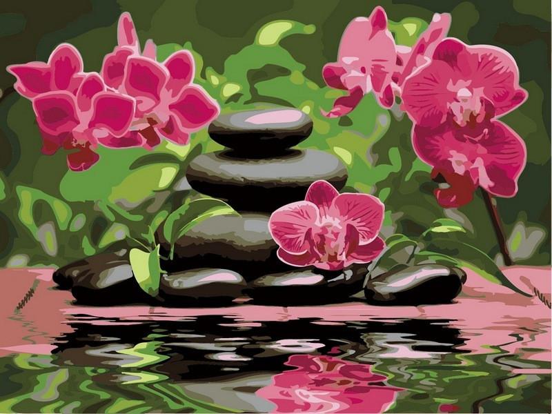 Картина по номерам 40×50 см. Babylon Лиловые орхидеи (VP 535)