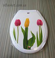 Крышка на унитаз с рисунком Тюльпан