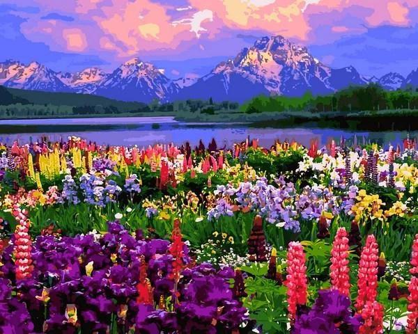 Картины по номерам 50×65 см. Национальный парк Гранд-Титон гора Моран