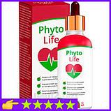 Phyto Life - Капли от гипертонии (Фито Лайф), фото 4