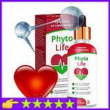 Phyto Life - Капли от гипертонии (Фито Лайф), фото 5