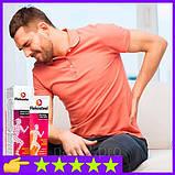 Flekosteel - гель для суставов восстанавливает суставной хрящ, фото 8