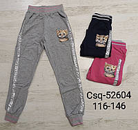 Спортивные брюки для девочек Seagull оптом, 116-146 pp. Артикул: CSQ52604, фото 1