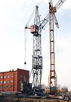 Аренда, услуги автомобильных, башенных, пневмоколесных, электрических кранов, фото 2