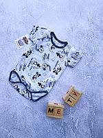 Боди детское 12 месяцев