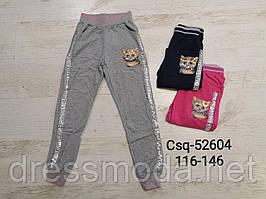 Спортивні штани для дівчаток Seagull 116-146р.р