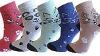 """Шкарпетки дитячі яскраві """"Lomani"""""""