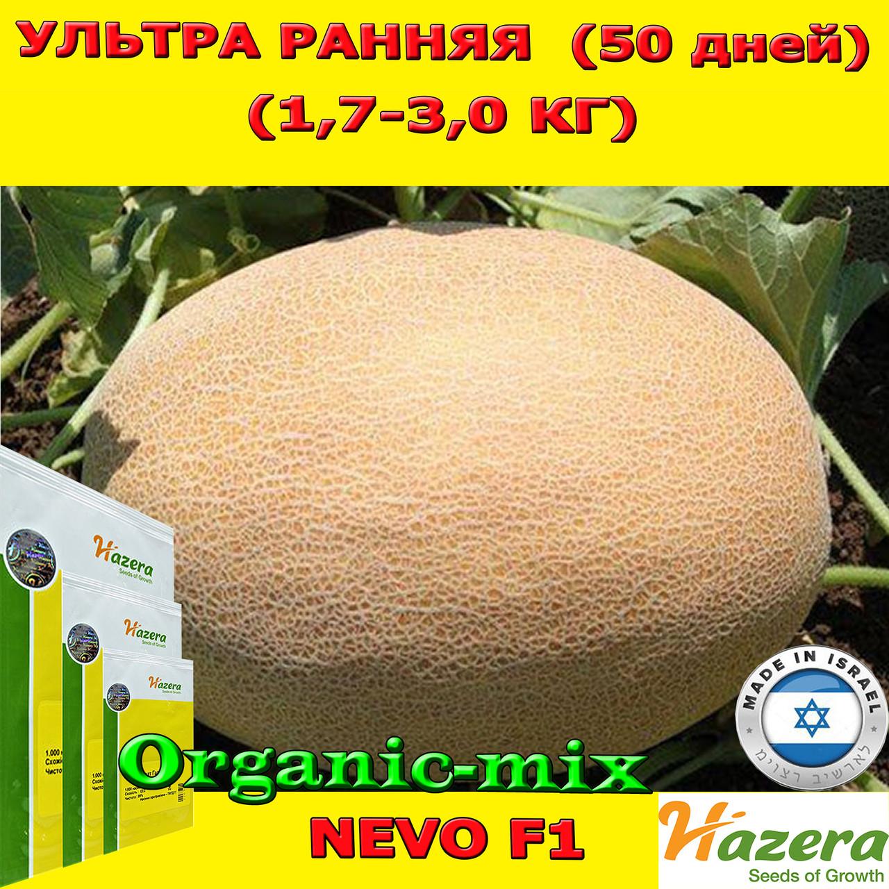 Семена, дыня НЕВО F1 / NEVO F1 ультра ранняя, 5000 семян ТМ Hazera (Израиль)