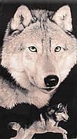 Пляжное полотенце Волк