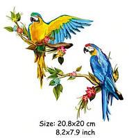 Стильная термонаклейка для одежды Цветной попугай
